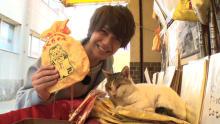 """King & Prince髙橋海人""""33億円稼ぐ""""福猫のご利益で宝くじ当選なるか?"""