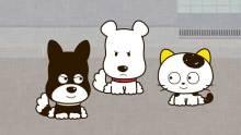 「タマ&フレンズ~うちのタマ知りませんか?」懐かしさ溢れる下町の犬・猫たちは元気いっぱいですよ!