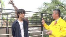 King & Prince髙橋海人が愛犬について語る「また歩いているところを見てみたい…」