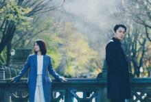 福山雅治×石田ゆり子初共演『マチネの終わりに』 愛の結末に2人が涙する特報映像解禁