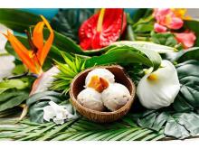 """マウイ島生まれの""""自然派ココナッツアイス""""が日本初上陸!"""