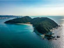 夏休みの大冒険!和歌山県の無人島で親子キャンプ開催決定