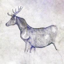 米津玄師、日曜劇場主題歌「馬と鹿」発売日決定、描き下ろしジャケ公開