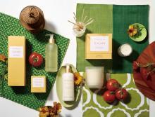 ローズとトマトの香りで夏を感じて♡TOCCA BEAUTYのボヤージュシリーズから新作「トスカーナ」がお目見え!