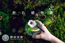 4日間だけのお楽しみ♩日本茶×植物園の体験型アートイベント「飲む植物園@東京茶寮」が再登場!
