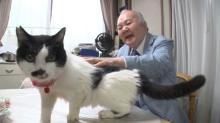 ひふみん、ネコのお悩み相談番組出演 「仲良くするための心得」を実践