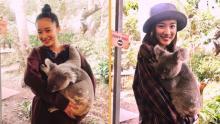永野芽郁、海外ロケで涙 オーストラリアで動物とふれあう「いとおしい!」