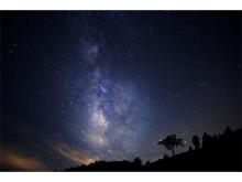 日本一の星空の下でヨガ体験!一夜限りのスペシャルイベント