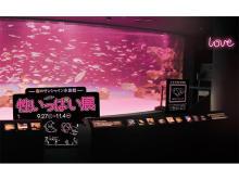 海の生き物の夜の姿にドキドキ!「性いっぱい展」開催