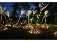 竹と灯りが創る幽玄な風景!奈良生駒で「高山竹あかり」開催