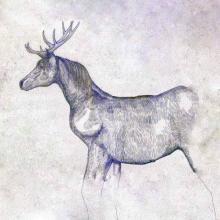 米津玄師「馬と鹿」8週連続1位 19年デジタルシングル総売上1位、2位独占