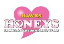ホークスチアチーム・ハニーズ、2020年度メンバーオーディション開催