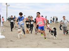 九十九里の復興にも!愛犬とビーチリゾートを楽しむフェス開催