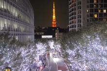 """六本木けやき坂が""""光の散歩道""""に クリスマスの訪れ…青白イルミネーション点灯"""