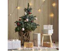 今年も本物のもみの木を販売!イケアのクリスマス
