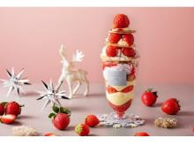 イチゴにまみれそう!?「東京ストロベリーパーク」のX'MAS