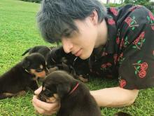 城田優、8匹の子犬とたわむれ「なんちゅーかわええ生き物や」
