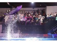 一日限定!京都水族館でイルカと立命館大学交響楽団の生演奏がコラボ