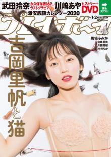 吉岡里帆、1年4ヶ月ぶり『週プレ』で新感覚のセクシー&キュート 猫&ガリバーに