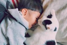 ひとりっ子少年が愛猫失った悲しみ乗り越え、2年経った今も毎日伝える「ザクロ、今日もありがとう」