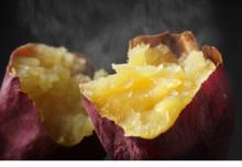 美味しい&楽しい4日間!焼き芋ファン必見の「さつまいも博2020」開催