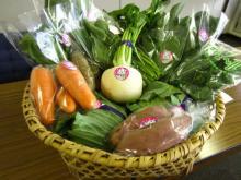 「とやまのカンカン(寒甘)野菜」「富山あんぽ柿」を耳と舌で味わう会食イベント