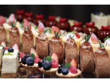 いちご&チョコのデザートビュッフェ付!大人のバレンタインディナープラン