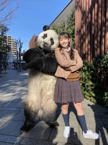 """『ZIP!』で令和版ワンポイント英会話 """"パンダ""""が英語のフレーズを伝授"""