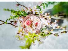 春爛漫!美味しくてヘルシーな「さくらスムージー」が今年も期間限定で登場