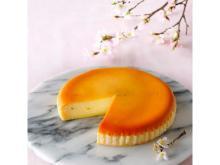 春のお祝いシーズンに!桜の上品な香りが広がる「さくらチーズケーキ」登場