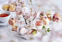 庭園の桜もお楽しみ♩京都の春を満喫するフォーシーズンズホテル京都の「さくらアフタヌーンティー」がステキ♡