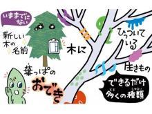 日本自然保護協会が庭やベランダでできる自然観察ツールを無償公開中!