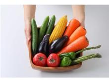 まとめ買いした食材を長持ちさせたい!保存テクニック満載『食品保存大全』