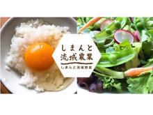 四万十の新鮮野菜&卵のセットが毎月届く!生産者こだわりの定期便がスタート