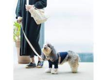 暮らしを彩る愛犬とのライフスタイルショップ&Webメディアがオープン