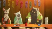 """映画『泣き猫』""""猫""""ライフ描いた特別映像公開 猫役を喜多村英梨、三木眞一郎ら"""