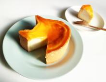かわいいだけじゃない本格派。ねこの形のチーズケーキ専門店「ねこねこチーズケーキ」が広島に初上陸です♩