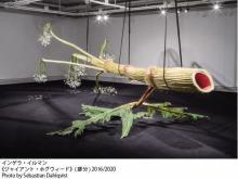 現代アートの国際展「ヨコハマトリエンナーレ」見どころ発表 参加アーティスト60組以上