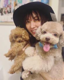 """石川恋""""犬まみれ""""ショット公開「まさに可愛いの渋滞」「100万ドルの笑顔」"""