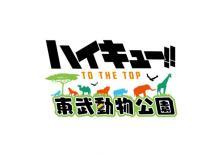 『ハイキュー!! TO THE TOP』と東武動物公園のコラボイベントが開催決定! 【アニメニュース】