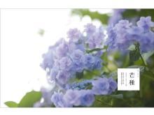 植物と暮らすアイデア&レシピ!web連載『二十四節気 暦のレシピ』が書籍化