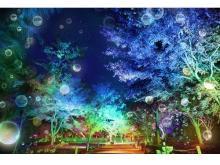 ソーシャルディスタンスを参加型アートに!二条城夏季特別ライトアップ開催