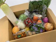 生産者を応援!あみプレミアム・アウトレット「新鮮野菜お楽しみBOX」販売