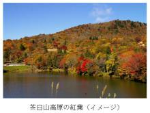 秋の鍋も無料!「愛知のてっぺん茶臼山高原から東三河を応援」イベント開催