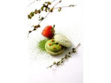 北川半兵衞商店の抹茶を使った京都限定「京のお濃い茶さん」がEC販売スタート!
