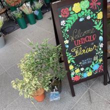 ユニクロでお花が買えちゃうって知ってた?1束390円だから「花のある暮らし」初心者さんにもぴったり♡