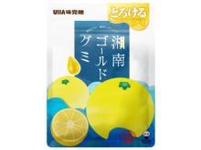 """神奈川県産""""湘南ゴールド""""果汁を使用した「とろけるグミ」が登場!"""