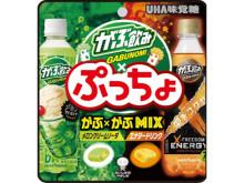 2種の味わいが楽しめる!「ぷっちょ」と「がぶ飲み」のコラボ商品が新発売