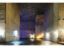 「大谷資料館」の巨大地下空間で昆虫写真のアートインスタレーション開催