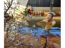 冬桜鑑賞しながら露天風呂を満喫!「おふろcafe 白寿の湯」の期間限定企画